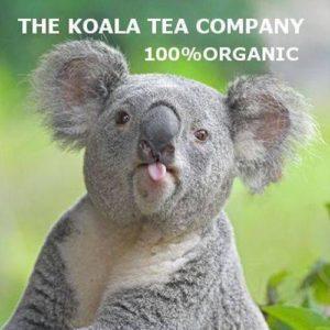 living with koalas and Koala tea