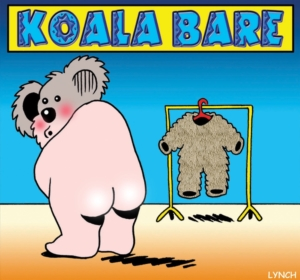 Living with Koalas - Mark Lynch