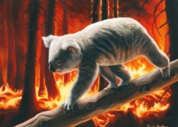 Living with Koalas - Tracie MacVean