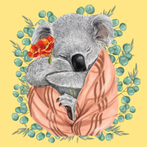 Living with Koalas artist Murilo Manzini
