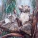 living with Koalas artist -Elizabeth COGLEY