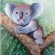 Living with Koalas artist marta Blaszak