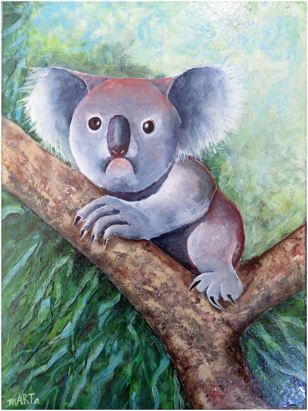 Living with Koalas artist marta Blaszak