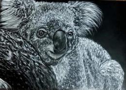 Living with Koalas artist Cassie Broker