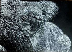Living with Koalas artist Cassie Broker