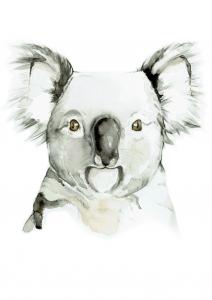 Living with Koalas artist Rachel Gregg