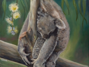 100 artwroks for a koala artists Nicole REED