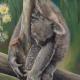 100 artwroks for a koala artists Nicole REED