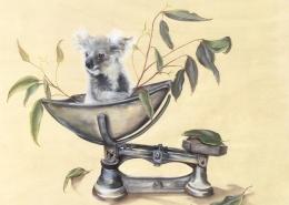 Living with Koalas artist Lesley Rosochodski