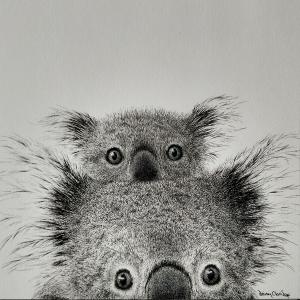 Living with Koalas artist Daisy Claridge