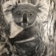 Living with Koalas artists - Kerrie Anne Rawson