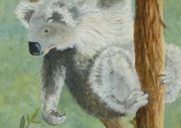 Living with Koalas artist - Densie Smith