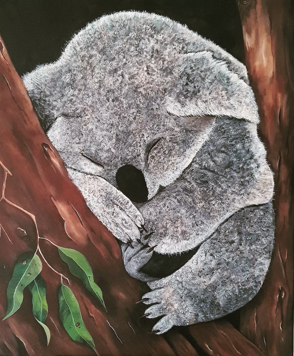 Living with Koalas artist - Sue Borg
