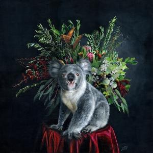 Living with Koalas artist - Melissa hartley