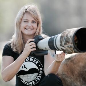 Living with Koalas artist - photographer Georgina Steytler