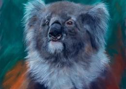 Living with Koalas artist Deb Farrimond
