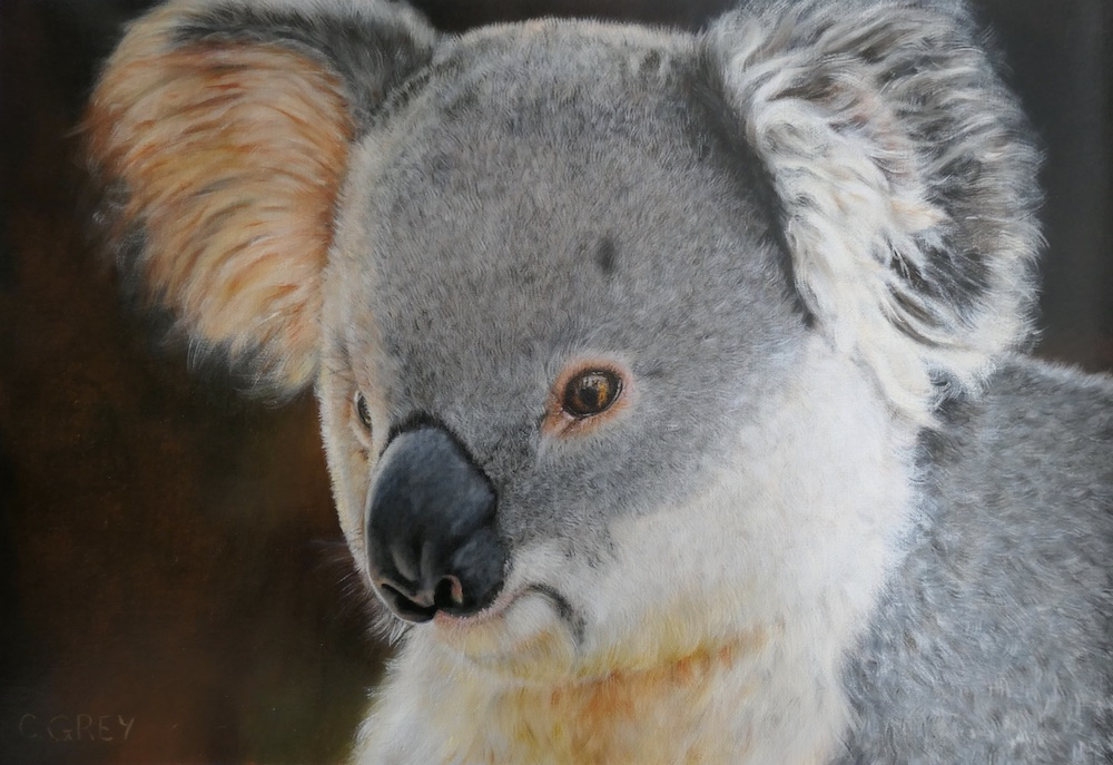 Living with Koalas artist Christelle GREY