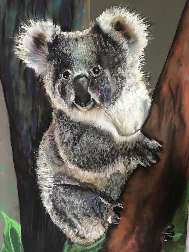 Linda Macorison - liviingwith koalas artist