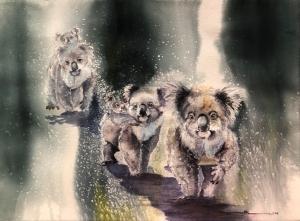 Living with Koalas artist Sandi LEAR