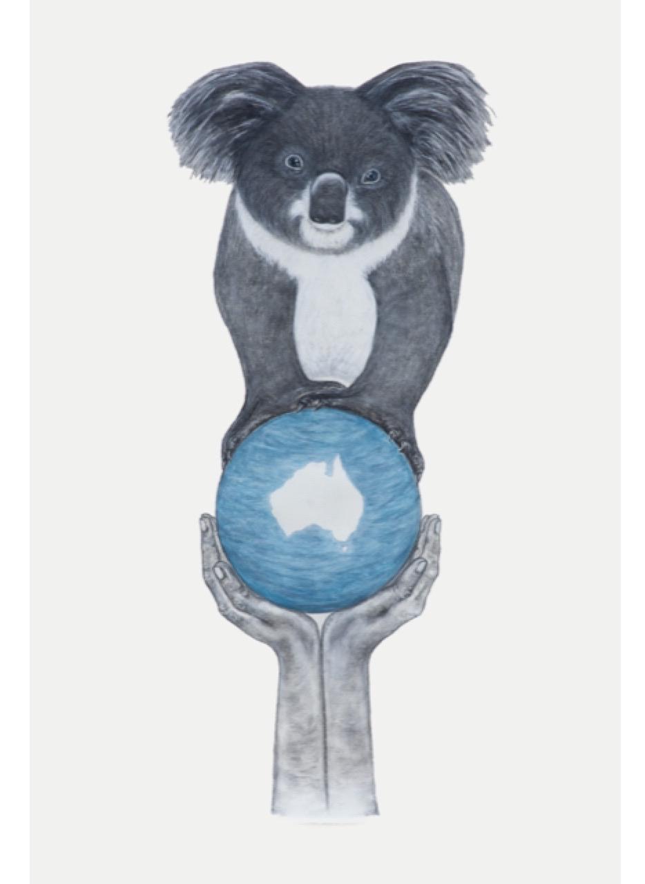 Living with Koalas artist lavinia SMITH-LEWIS