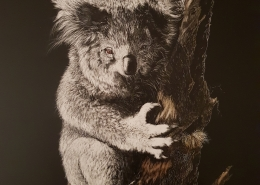 Livng with Koalas artist - Jan Lowe