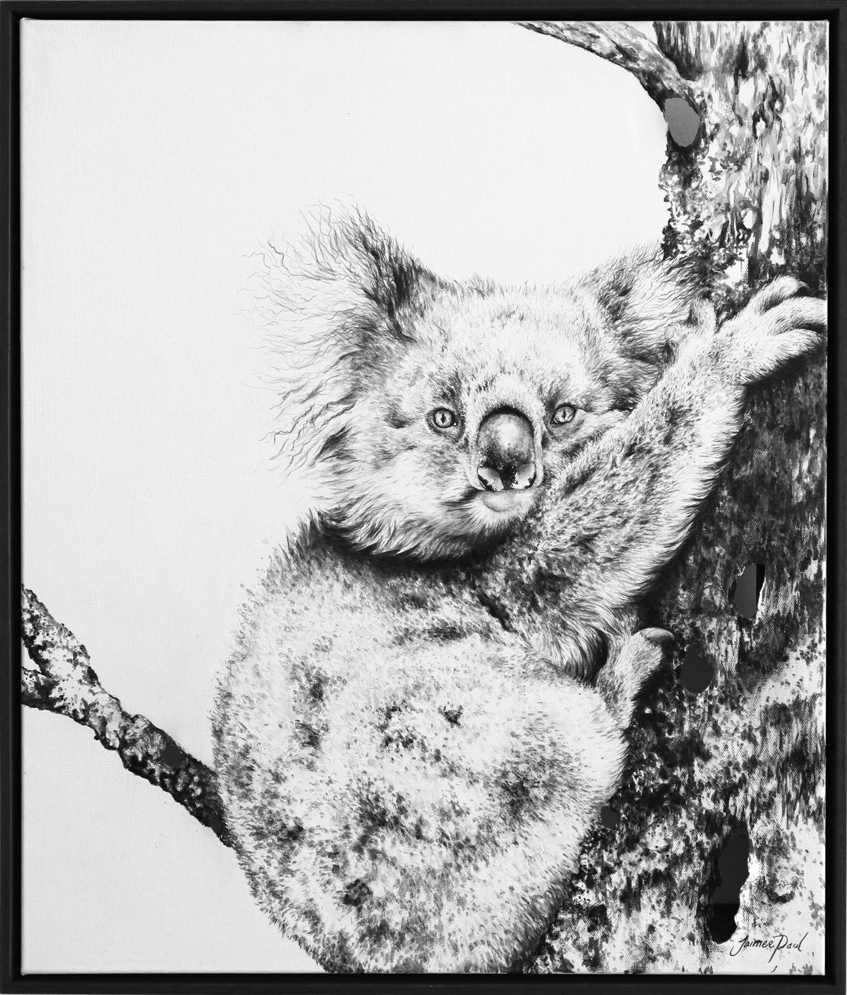 Living with Koalas artist Jaimee PAUL ' Countless'