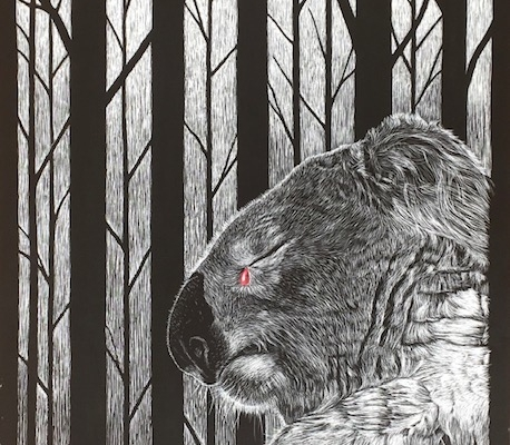 Living with Koalas artist Sam Penninis