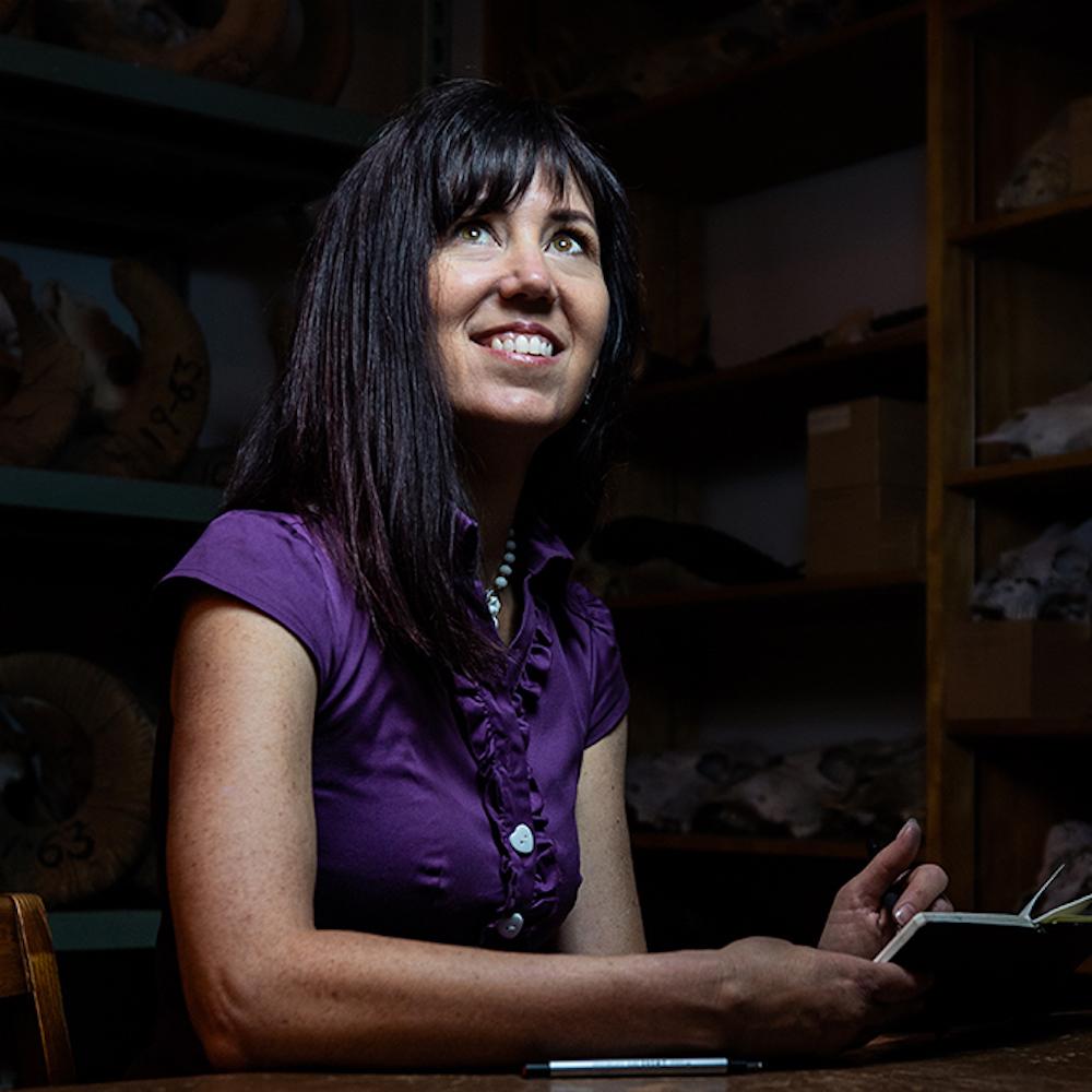 USA 50 artist - Arizona - Rachel IVANYI