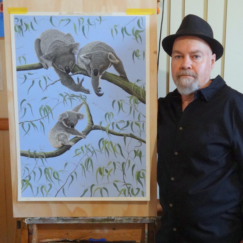 living with koalas artist John DEERY